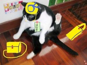 猫ばあちゃん