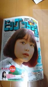 ビッグコミック 2019年 6月 増刊号