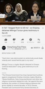 In full: 'I begged them to kill me' - ex-Xinjiang detainee Mihrigul Tursun gives testimony