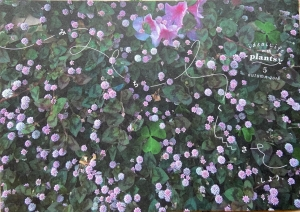 ideallife with plants vol.5 「みちくさ、しよう」