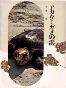 アカウミガメの浜 (動物の記録2・1971年)