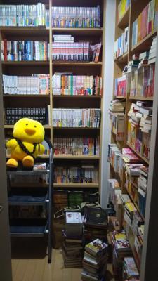 カオスな書庫から、ディズニーのガイドブックを探し出してきた。整理しないとなんだけど、どこから手をつけていいものか。床に置いてあるのと、横向きに置いてある本は、ほぼ積み本。