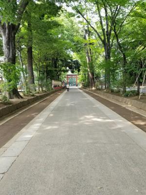 近くに来たので久しぶりに日本一長い参道♪