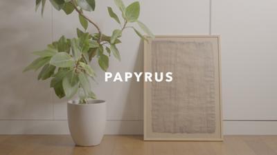 エジプト旅行で買ってきたパピルス紙を額に入れて飾ってみたた!  動画→ https://youtu.be/wcoV2k-IVHA