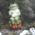 からっぽな蛙《真梨江》