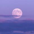 色彩をもたない月