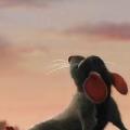 Rabbbit Rabbit