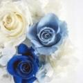 blue xx