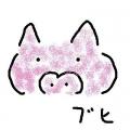 kaichupupu