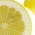 レモンのこころ