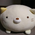 舞人(maito)