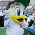 Naoki Noike