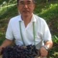 Tokihiro  Noda