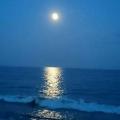 月明かり奏(かなで)