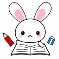 ウサギ犬ちゃん(о´∀`о)ノ