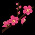 桜木 あやの