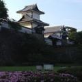 Kana Koshimori