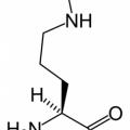 Amino321
