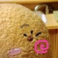 tamaobattery@「真顔の顔文字で、きゃっ(^・ ω ・^)❤️と言ってみる会」会長