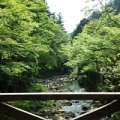 Yukitaka Hironobu