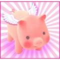 cochon_voyage