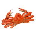 意識高い蟹
