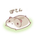 鷺@みんさー