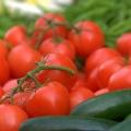 tomatty