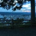kokua_photo